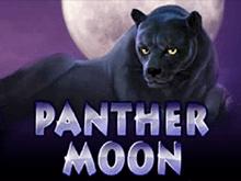 Игровой машина Panther Moon вместе с бонусами Вулкан