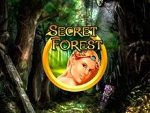 Бонусы во игровых автоматах Secret Forest